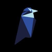Ravencoin Lite