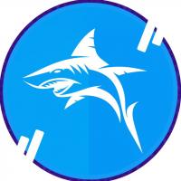 Yearn Shark Finance