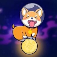 Shiba Moon