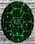 Turtle Network