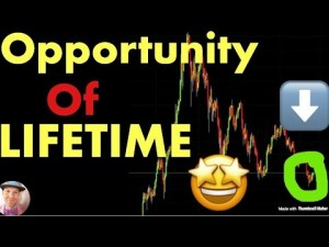 Bear Market Bottoms: THE OPPORTUNITY OF A LIFETIME